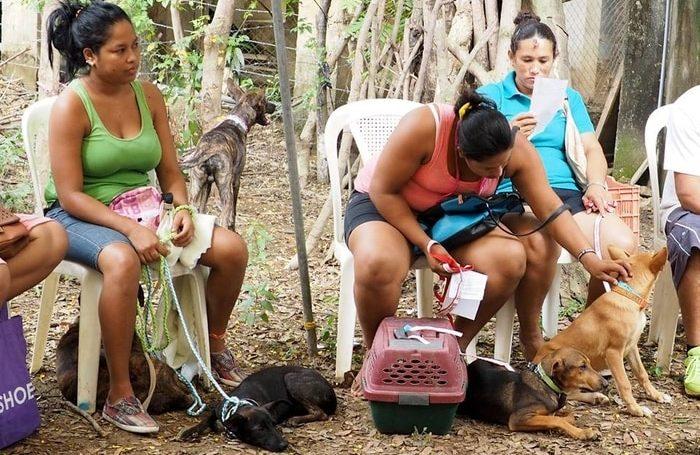 World Vets Nicaragua