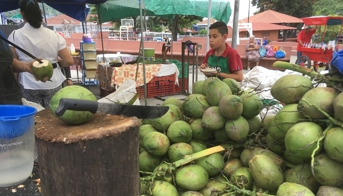 Fresh coconut water (agua de pipas) for sale