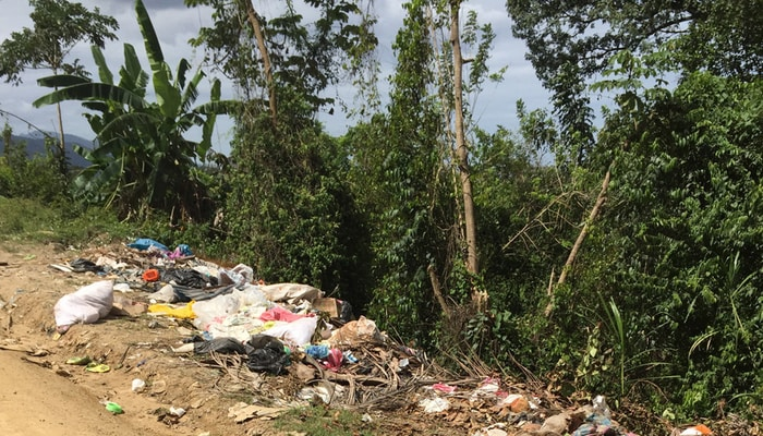 More roadside garbage in Honduras